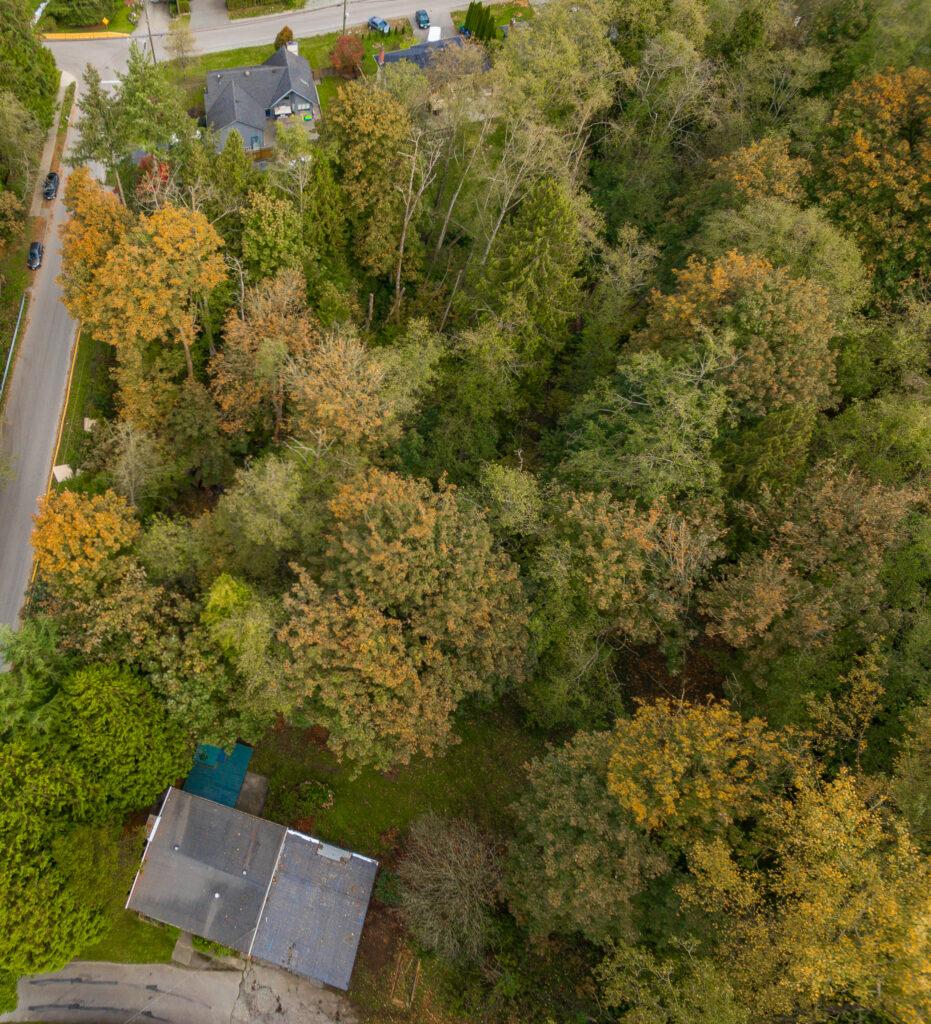 11168 Ellendale Drone2 For Sale Krista Lapp 1